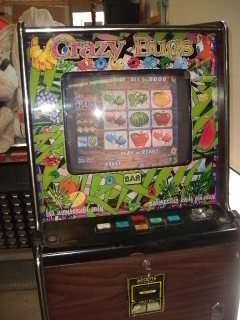 Crazy bugs slot machine download